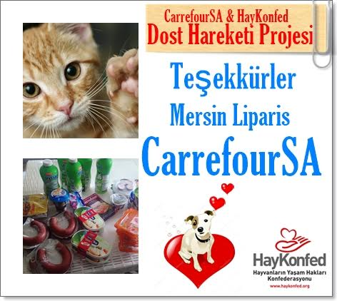 liparis_carrefoursa